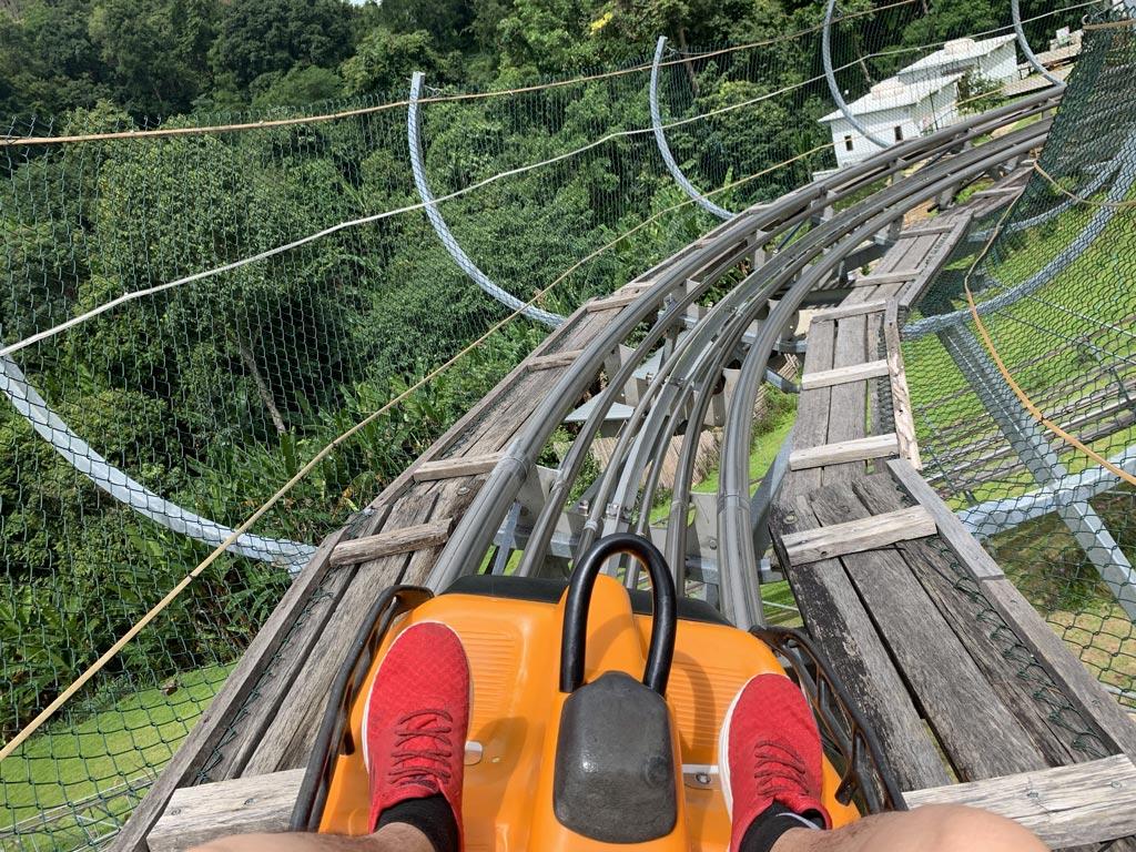 清邁-森林過山車